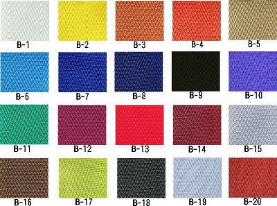 colorsampleseatbelt1.jpg